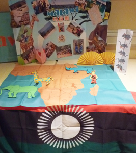 Country displays prepared by student